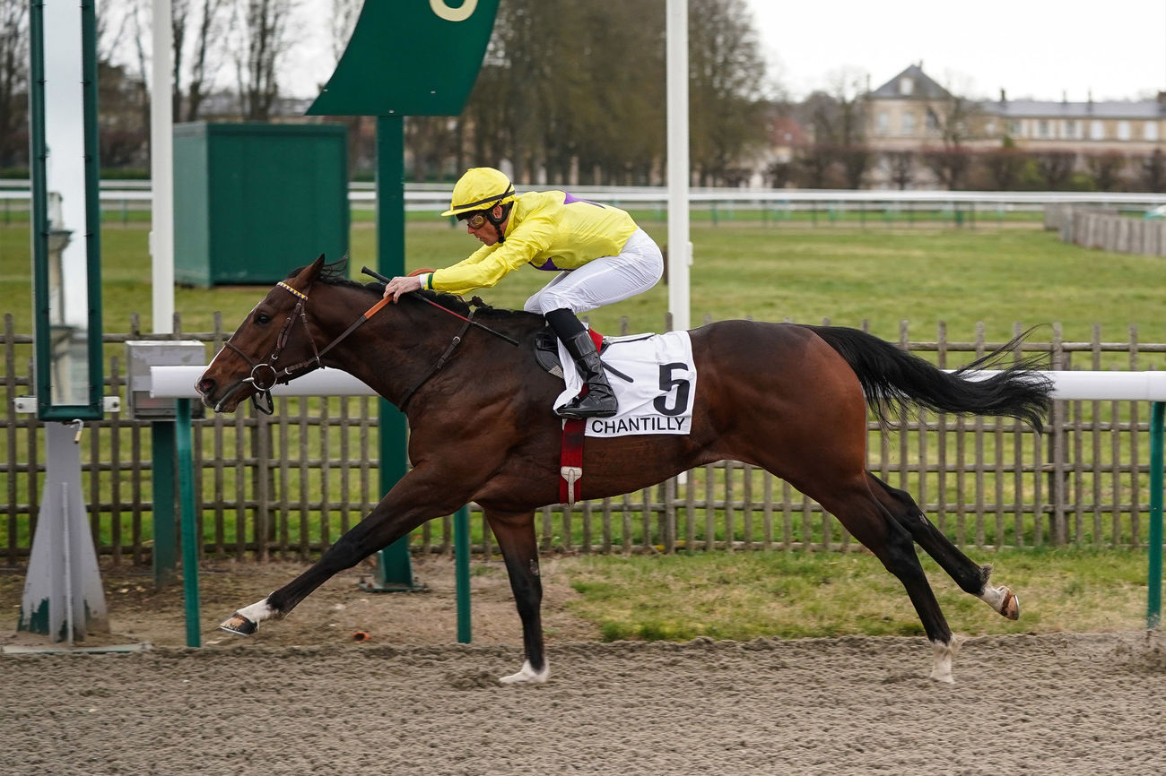 Speed Chance vers le Marchand d'Or