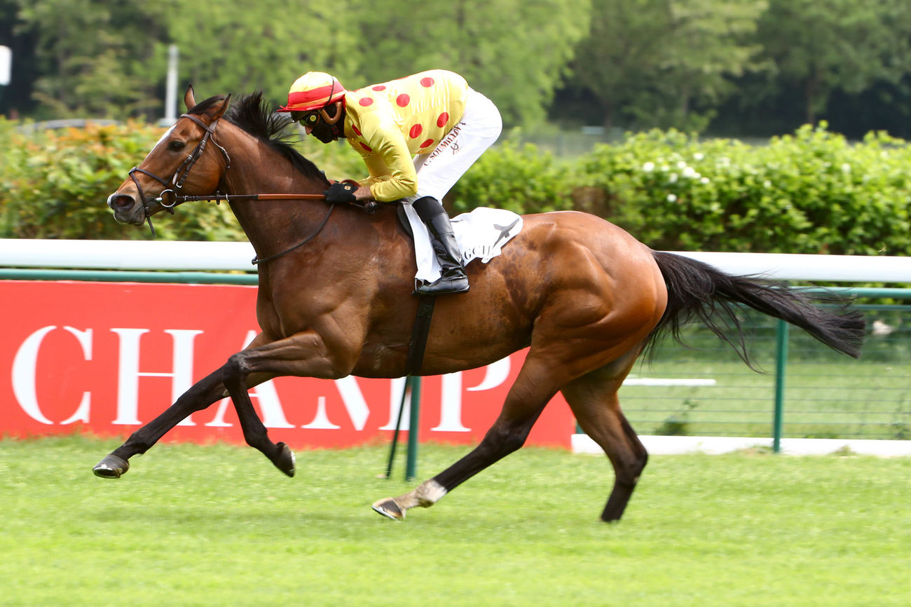 Spinning Memories remporte le Prix du Palais-Royal