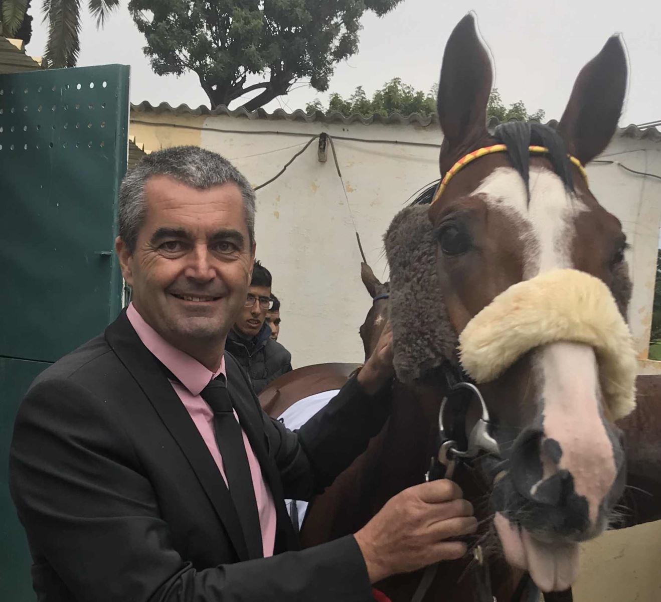 Stéphane Chazel: the one man band of the French Purebred Arabian scene