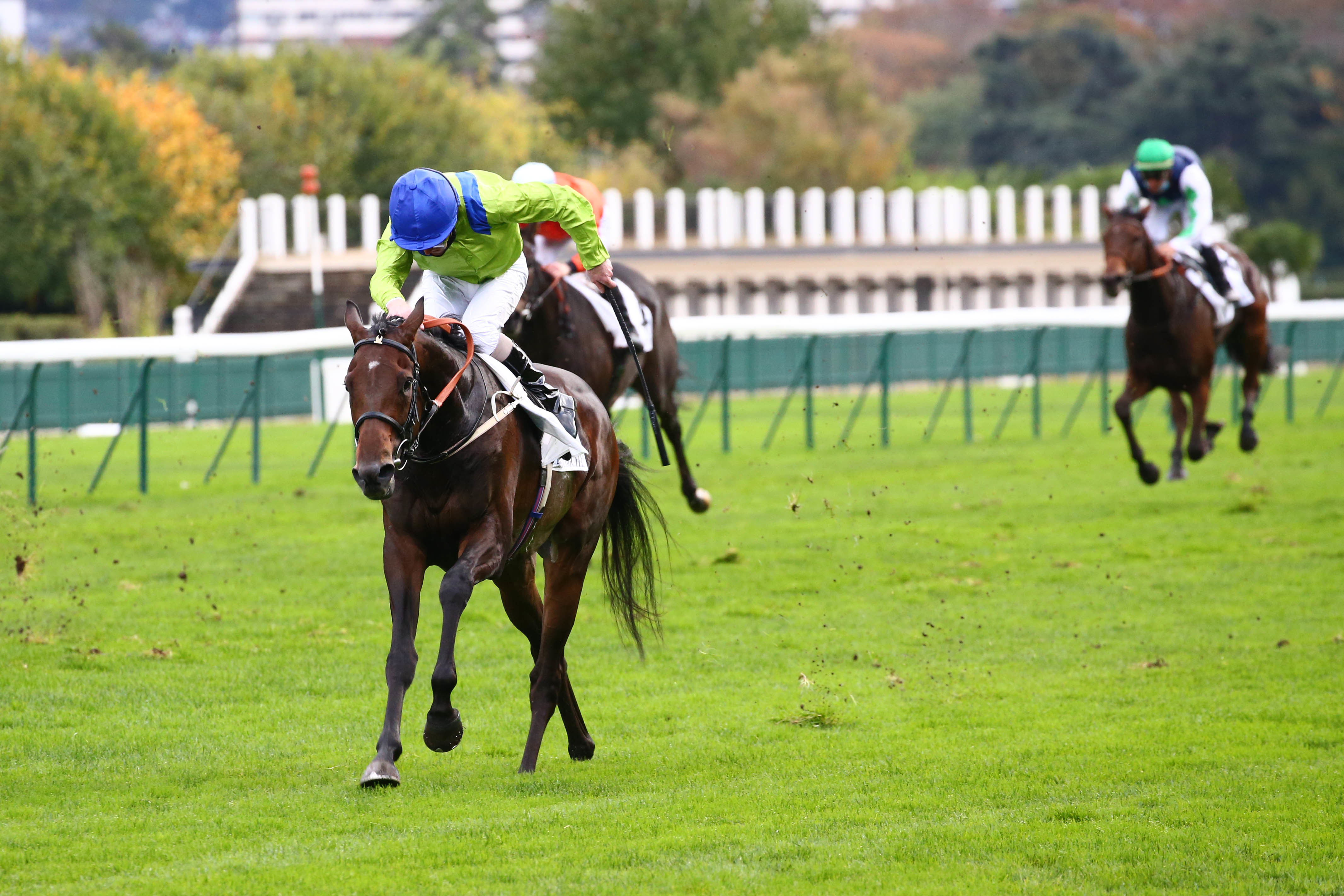 Prix Royal-Oak (Gr1) : Subjectivist renaît de ses cendres