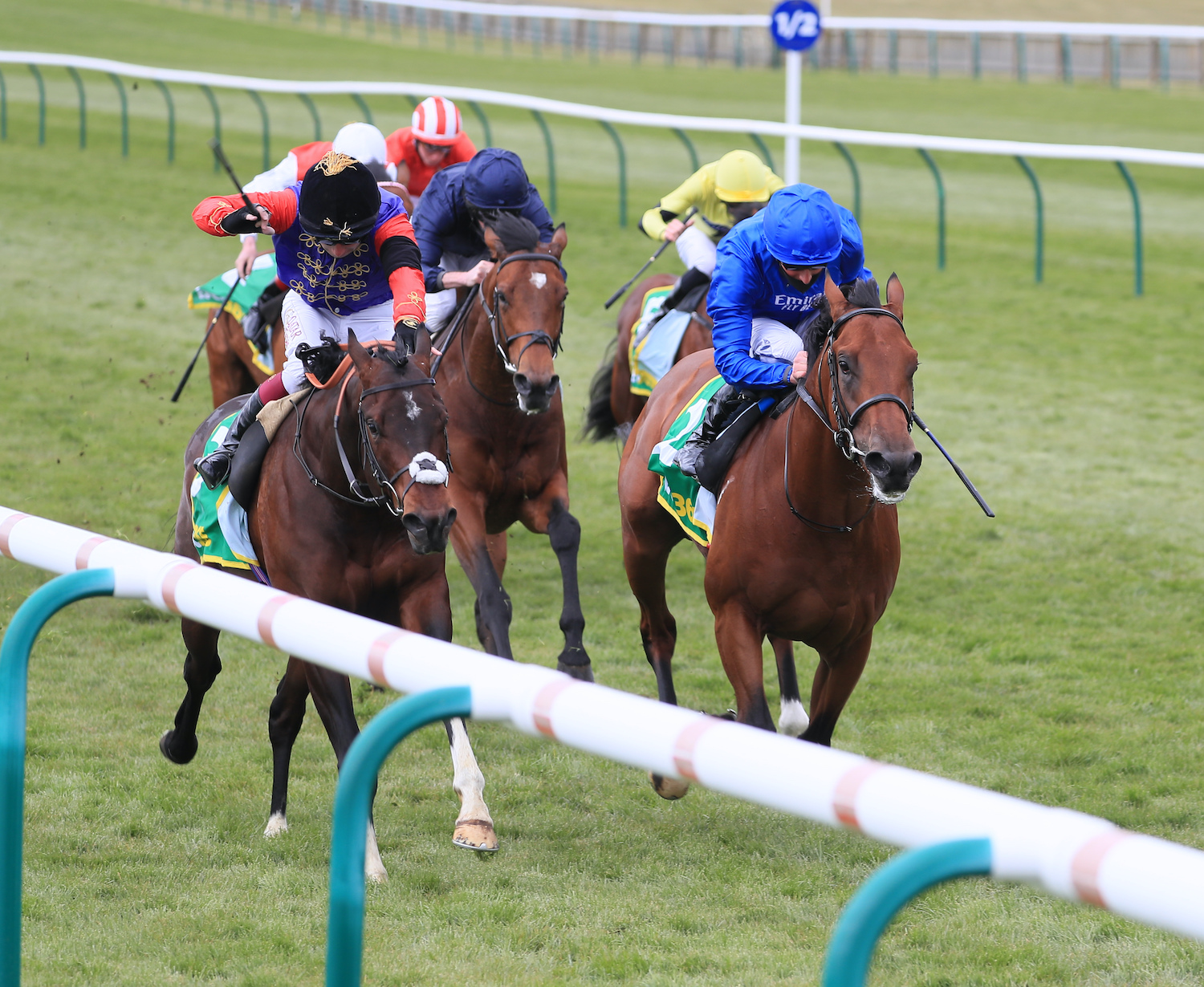 European Free Handicap(L) : Tactical vers Royal Ascot pour Sa Majesté