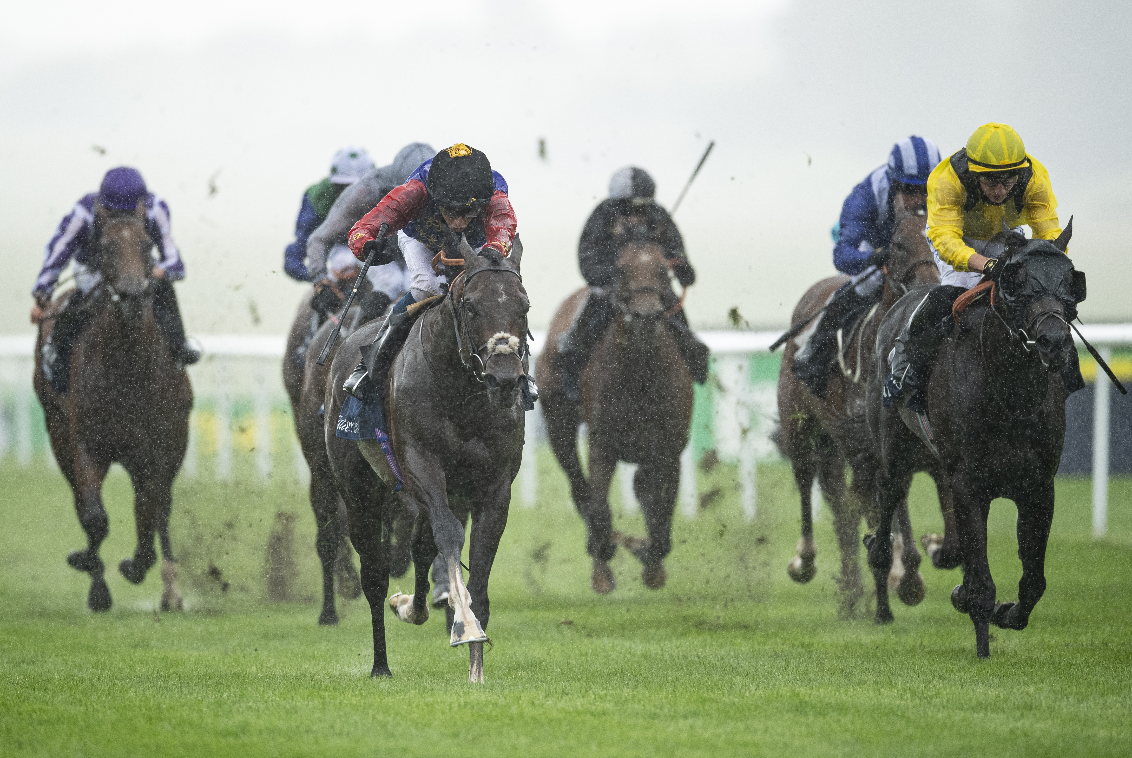 Tattersalls July Stakes (Gr2) : Tactical, un poulain royal pour le Morny