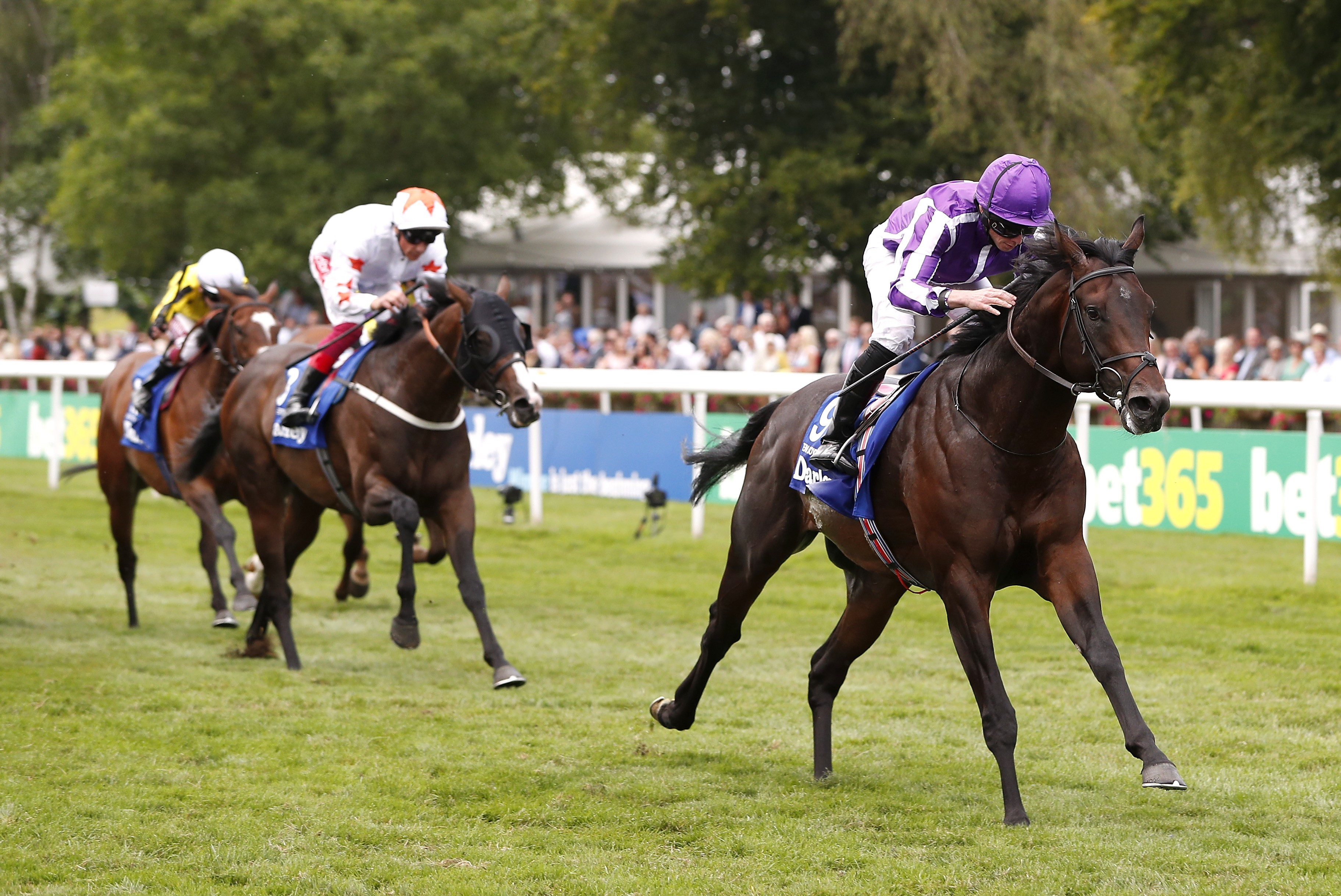 DARLEY JULY CUP (GR1) - Ten Sovereigns : le sprint c'est son dada