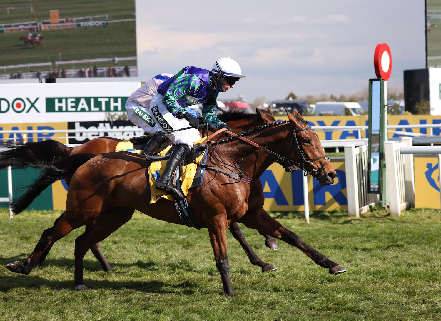 Ryanair Stayers Hurdle (Gr1) : Thyme Hill tient sa revanche