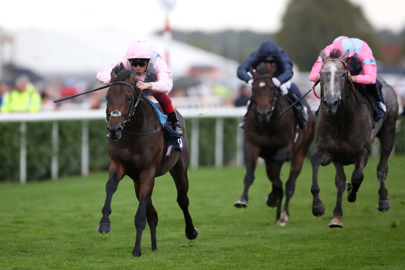 TATTERSALLS IRISH 2.000 GUINEAS (GR1) - Too Darn Hot vs Magna Grecia : même les bookmakers sont indécis