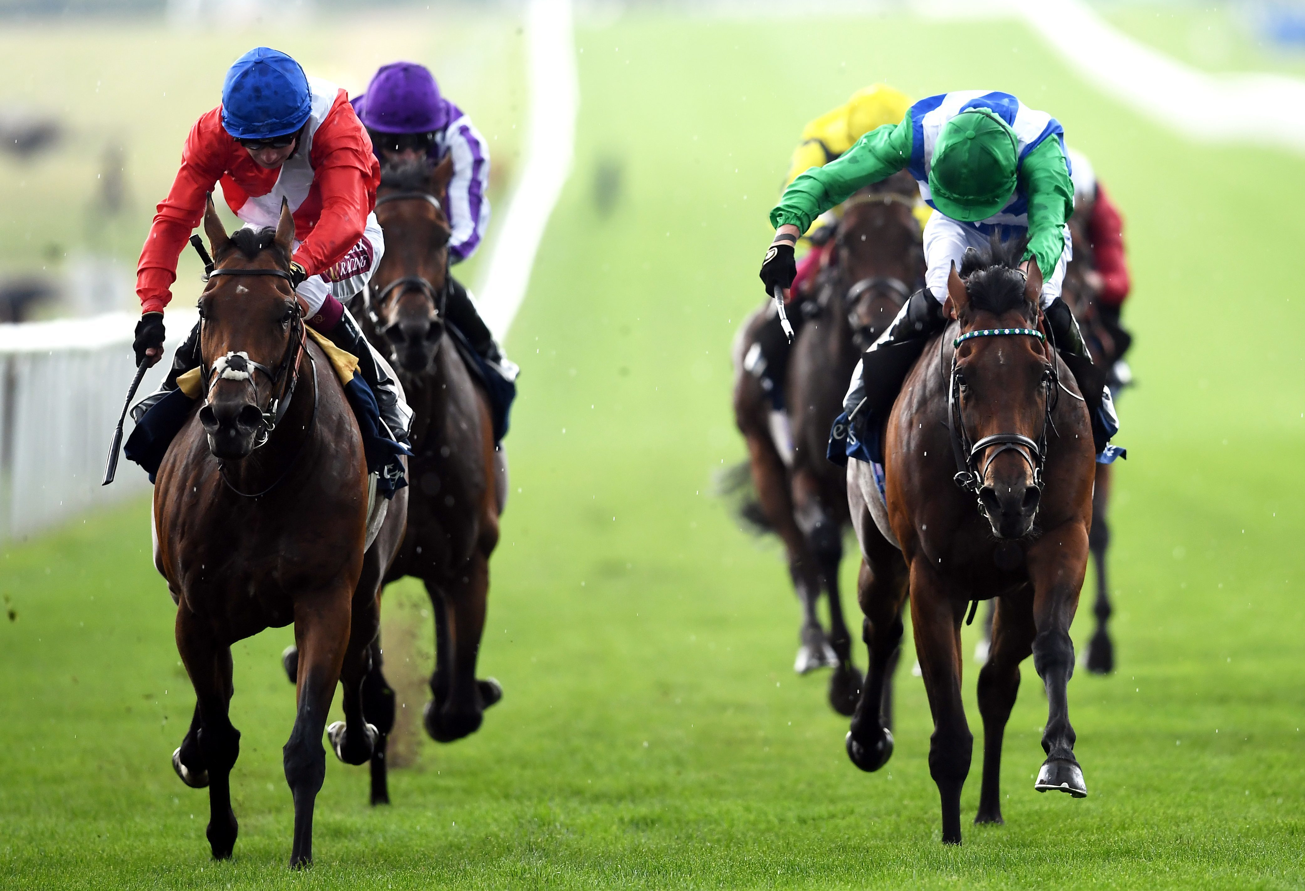 Veracious vers les Sussex Stakes