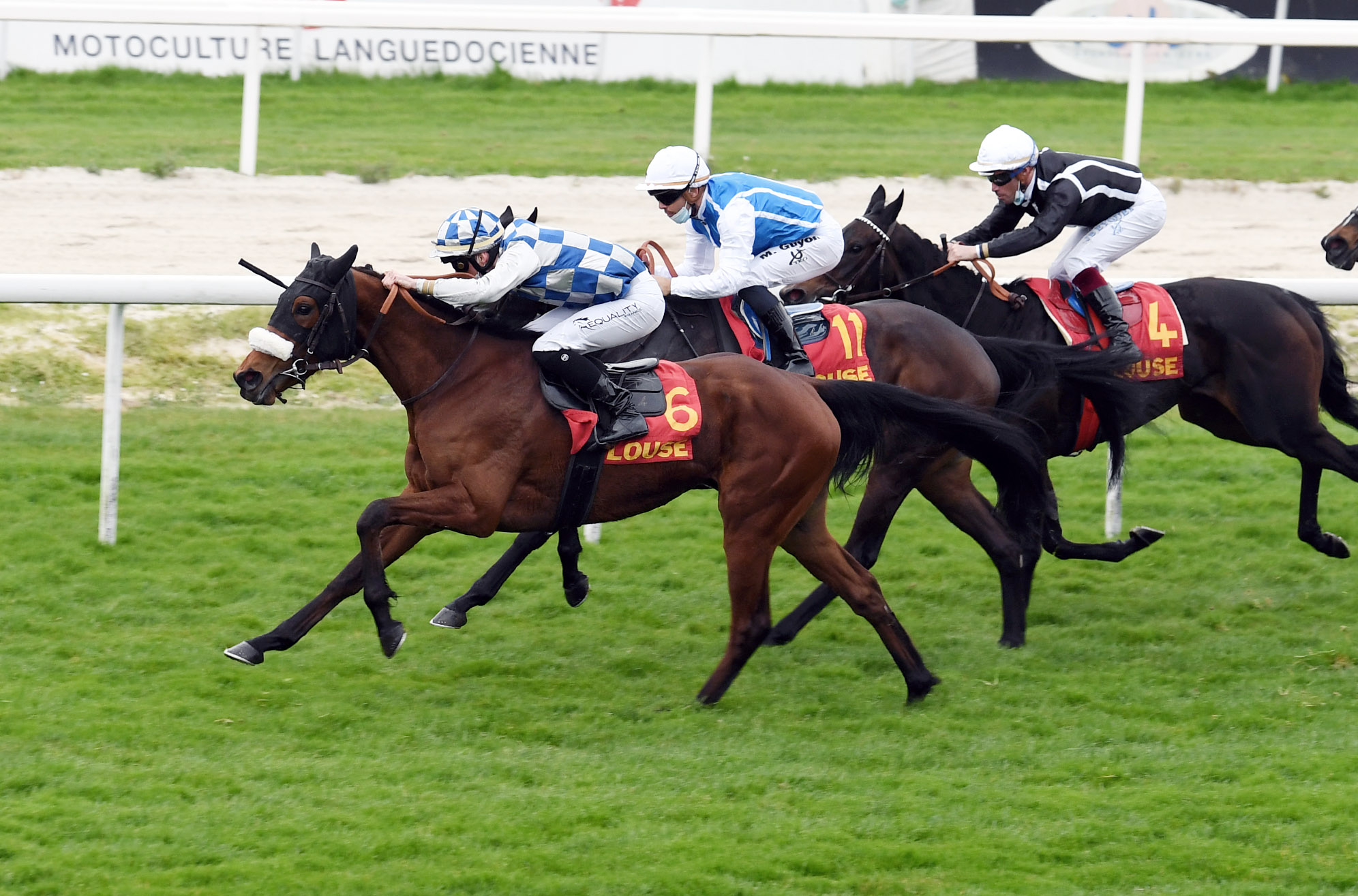 Prix de Jolimont (Maiden) : Wind of Light, avec aisance