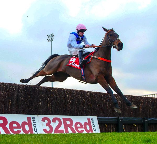 ASCOT CHASE (GR1) - Waiting Patiently face aux french breds