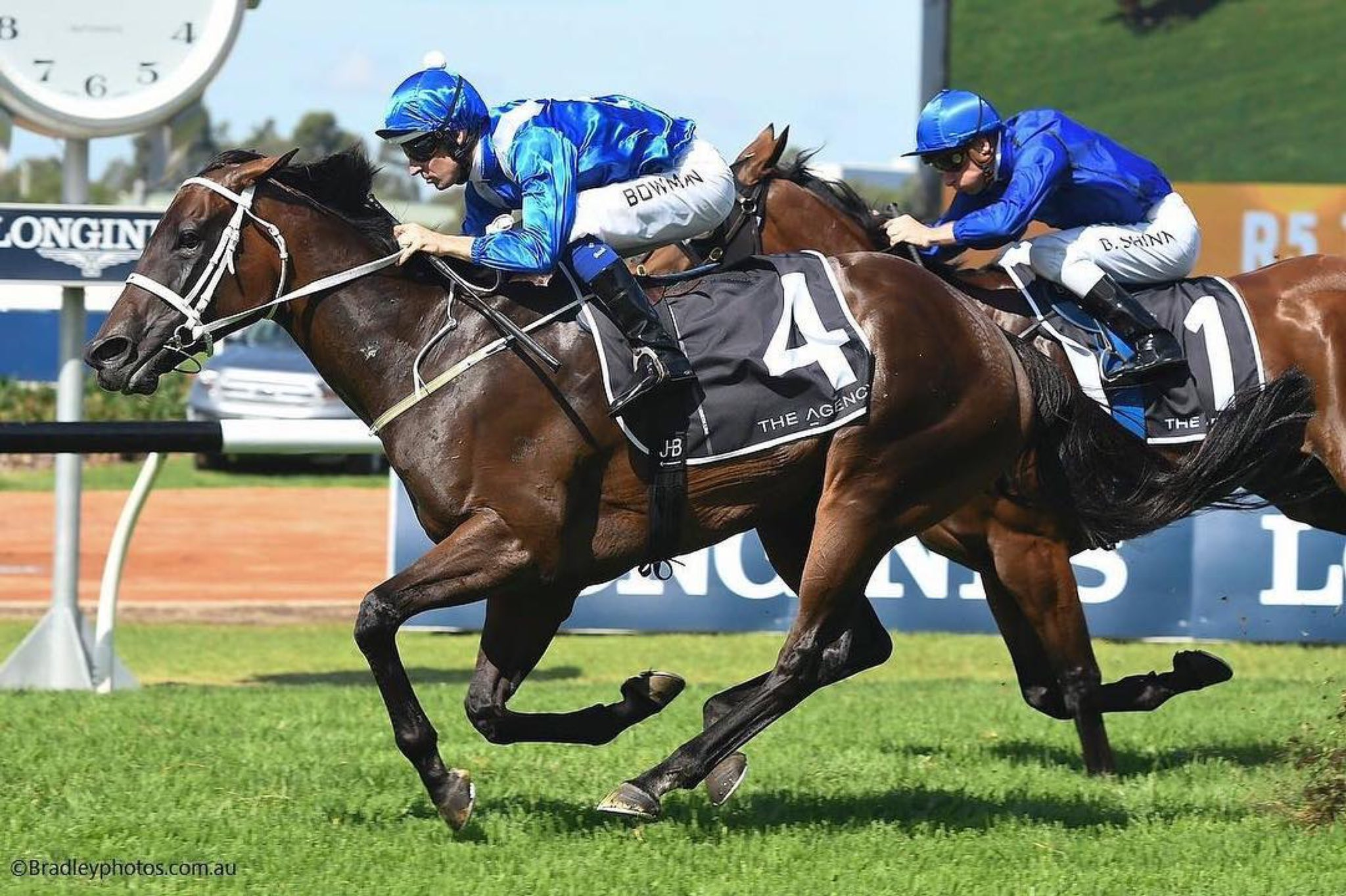 GEORGE RYDER STAKES (GR1) -  Winx, l'avant-dernier spectacle