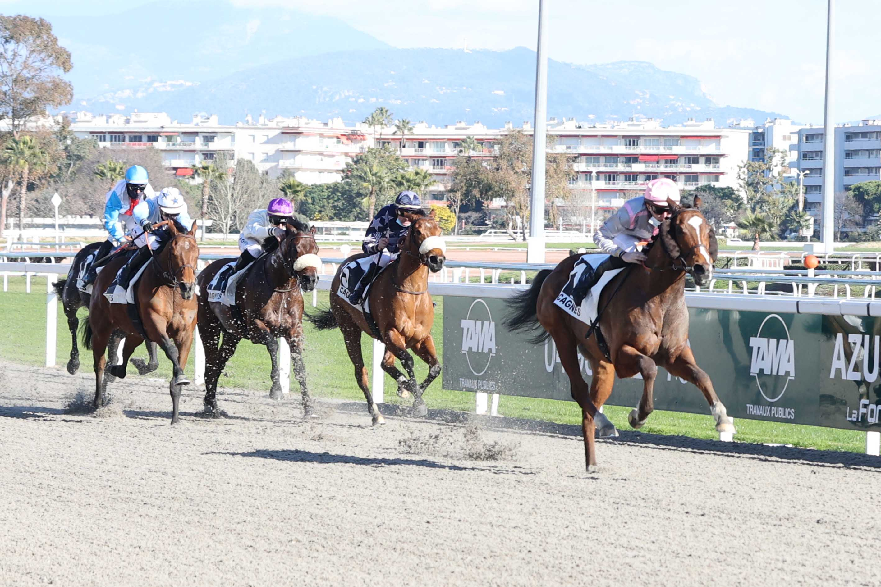 Prix de Seranon (Classe 2) : Wonder Boy facilement