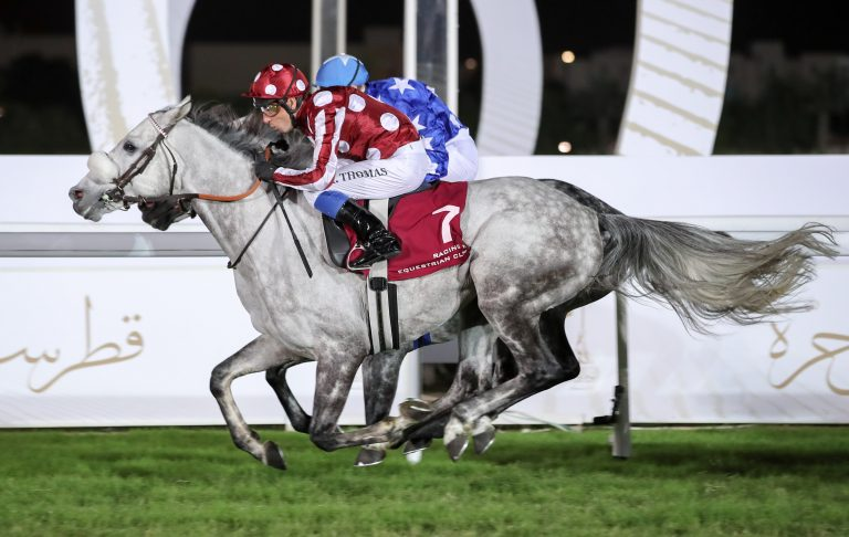 THE LATE SHEIKH JASSIM BIN MOHAMMED AL THANI TROPHY- QATAR NATIONAL DAY TROPHY (GR2 PA) - L'éclair de classe de Yazeed