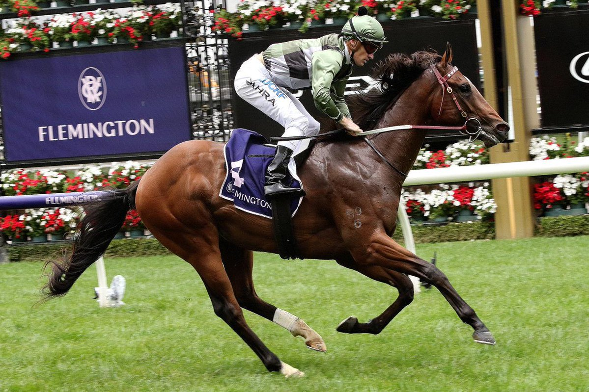 GOLDEN SLIPPER STAKES (GR1) - Coolmore s'offre une chance face aux six Godolphin
