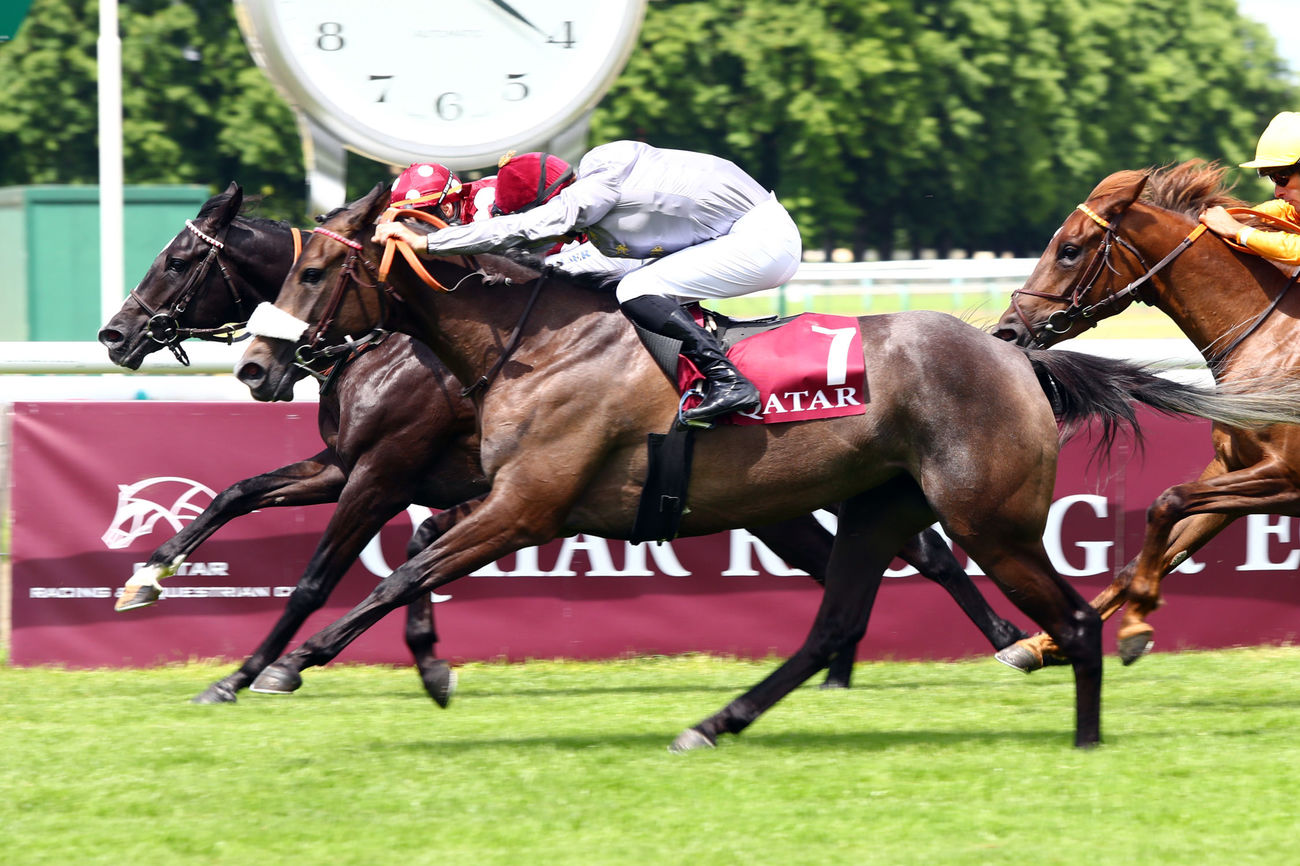 Meethag becomes the first group winner of Dahor de Brugère