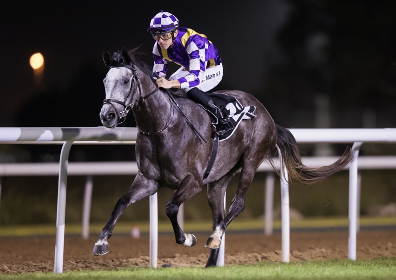 Ihtesham proves to be the revelation of the United Arab Emirates season